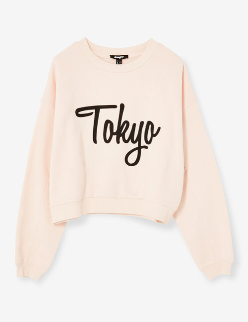 Light pink sweatshirt with back embroidery detail