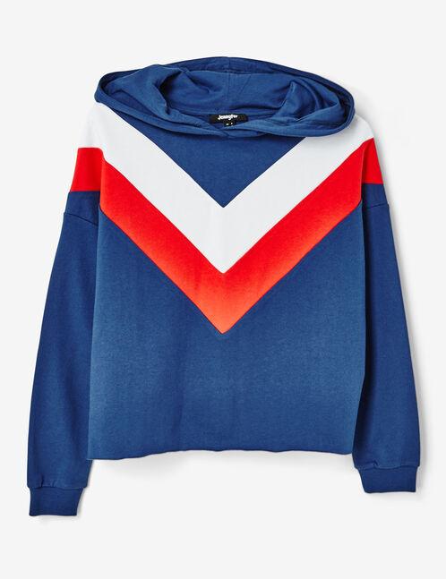 sweat tricolore bleu, rouge et blanc