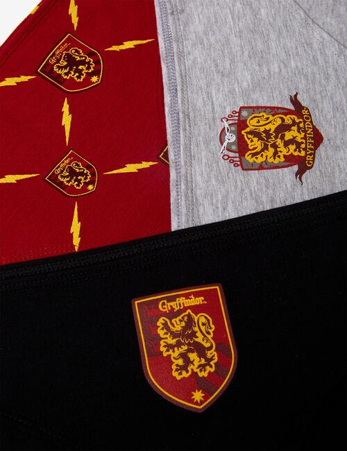 Harry Potter Gryffondor knickers