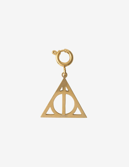 Charm relique Harry Potter