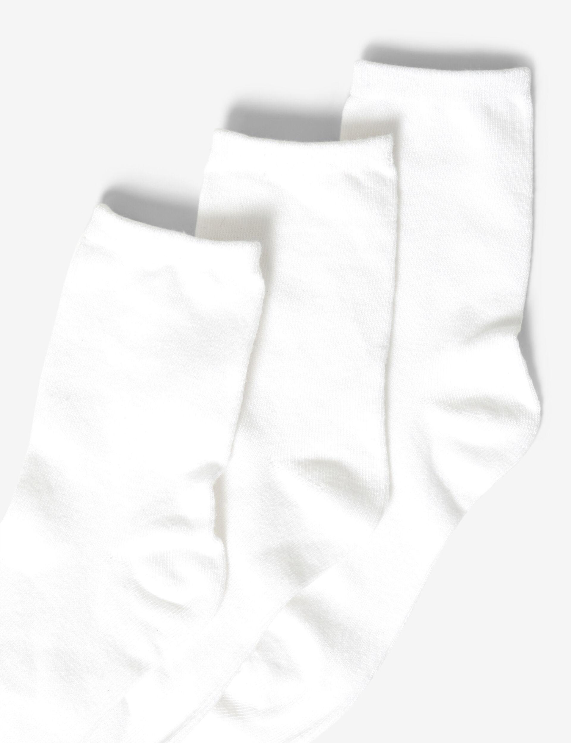 Basic over the knee socks