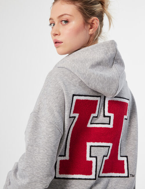 Harvard hoodie